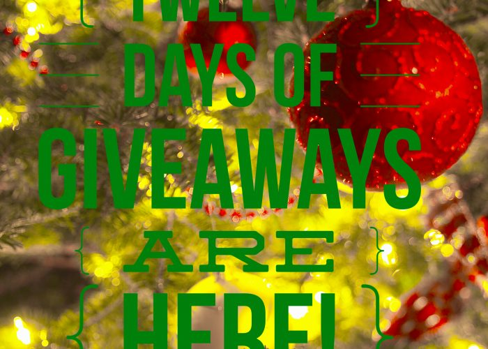 Twelve Days of Giveaways