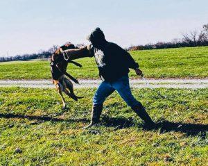 Cone Distributing donates dog to Franklin County Sheriff