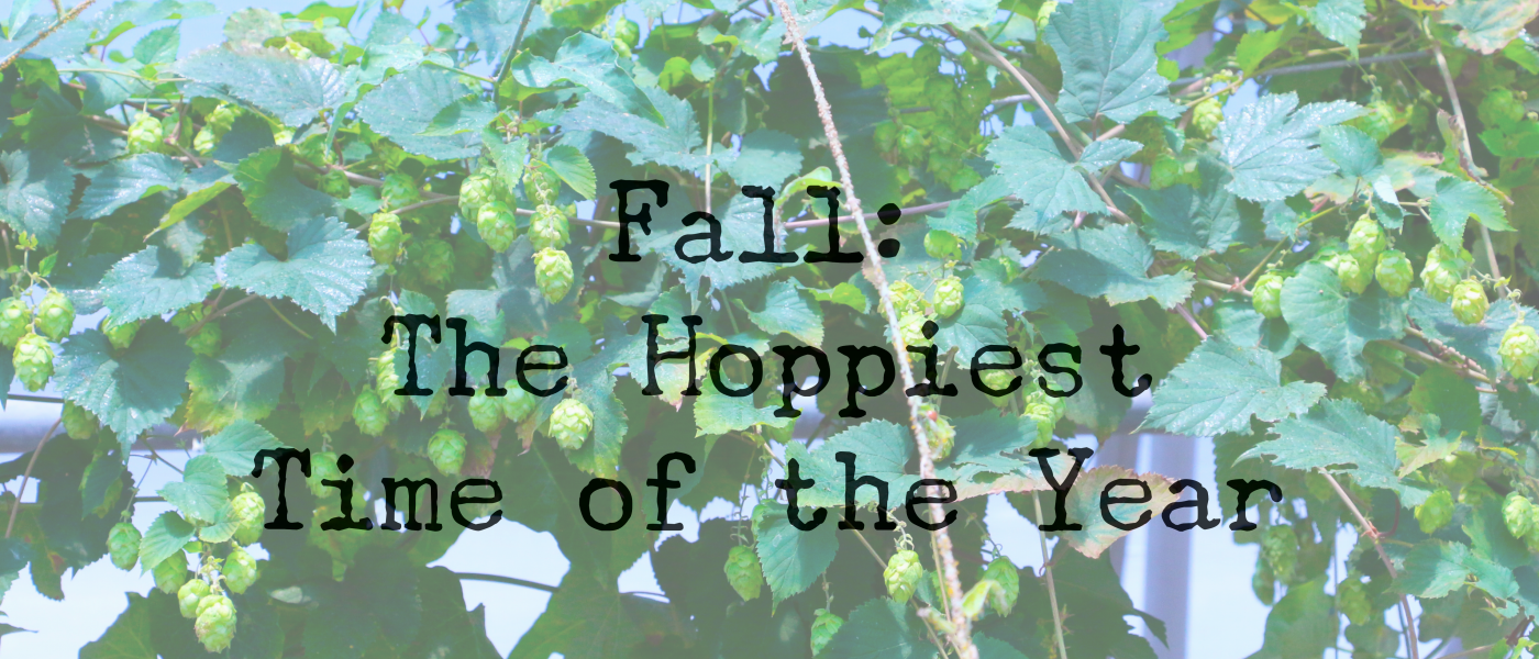 Fall is the best time for a hoppy beer