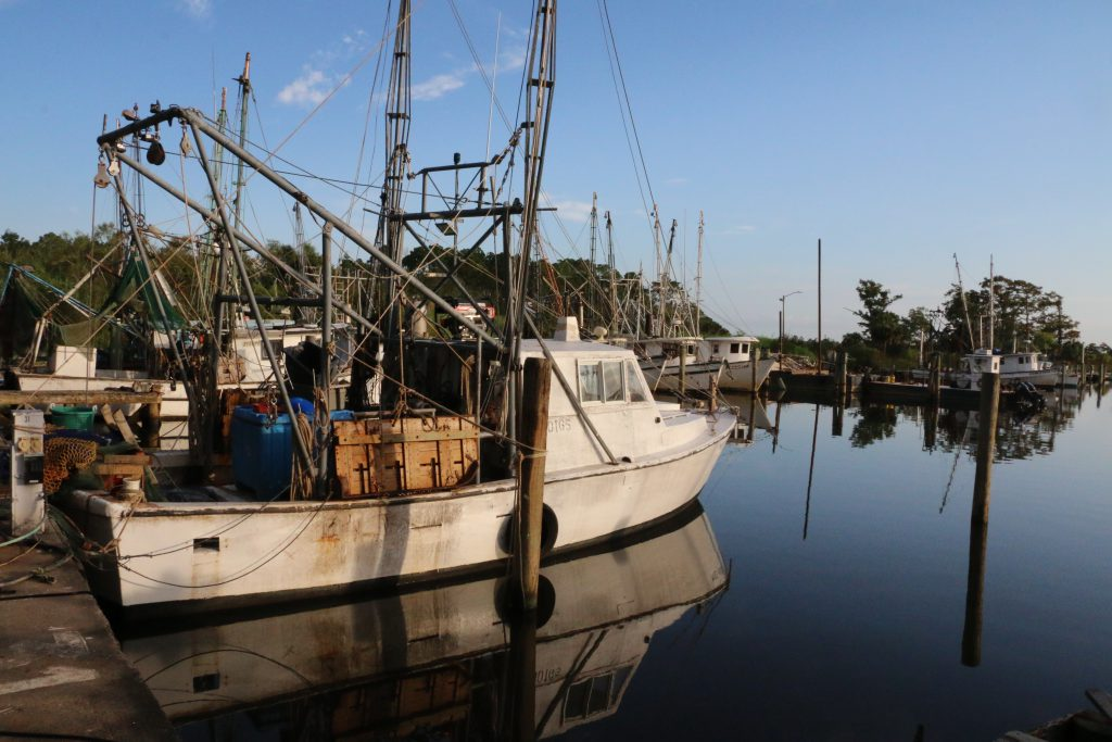 Boats at rest in Mill Pond in Apalachicola